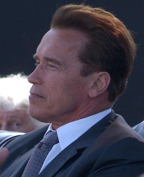 490px-Arnold_Schwarzenegger