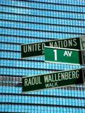 UN Photo 10