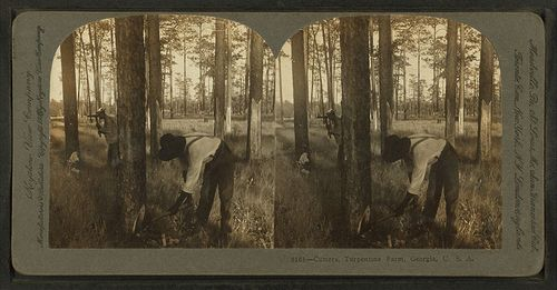 800px-Cutters_at_Turpentine_Farm,_Georgia,_from_Robert_N._Dennis_collection_of_stereoscopic_views