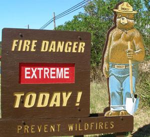 Smokey-bear-extreme
