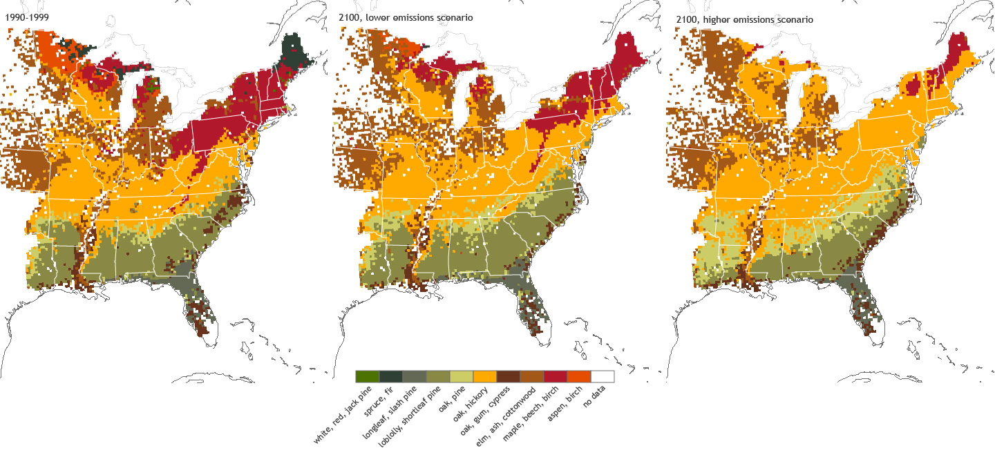 Environmental Law Prof Blog - Us fall color map