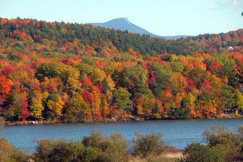 Vermont forest-fall-08-web