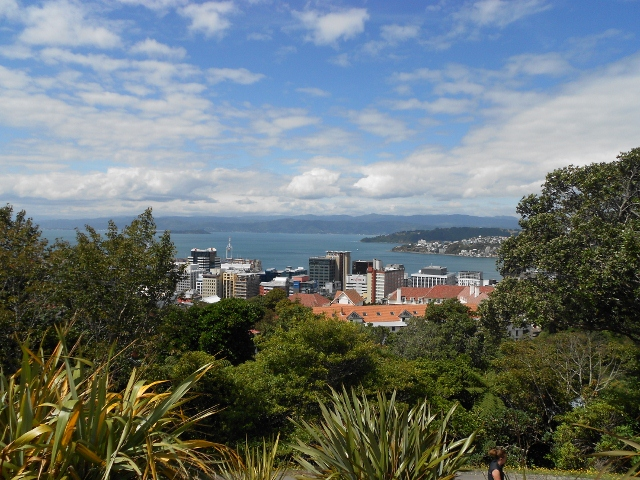 Wellington NZ (640x480) (640x480)