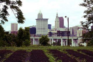 Cleveland-ohio-urban-gardens-by-cleveland-kid-4