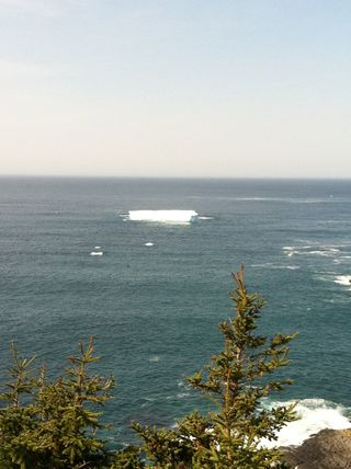 Iceburg off NFL coast