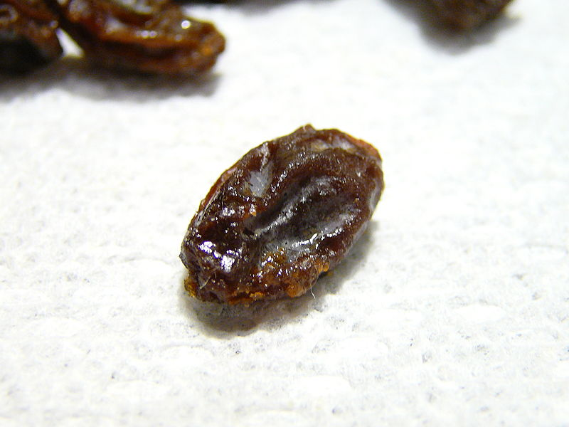 800px-Single_raisin