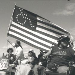 Disability-flag-01-m