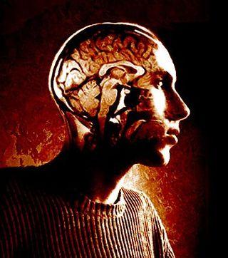 Inside_my_head_cropped