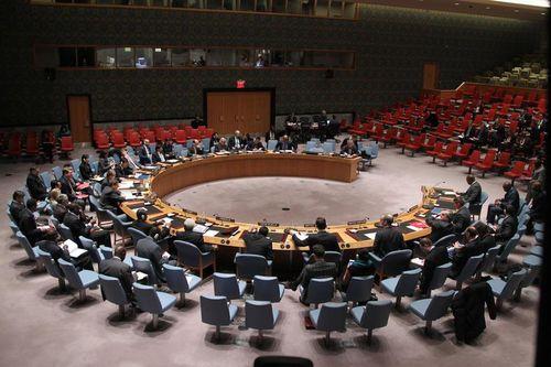 UN Security Council (UN Photo-Devra Berkowitz)
