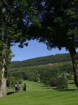 Green-golf-course
