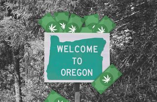 Oregon-pot