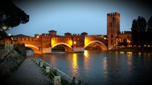 Verona Bridge David Austin Photo