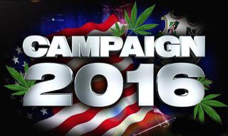 2016_marijuana_legalization_efforts_countrywide_potlocator