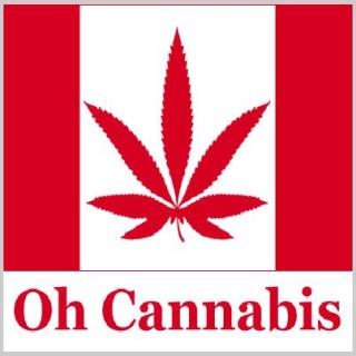Help cant do my essay cannabis control policy