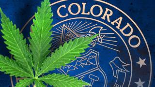 Marijuana+colorado+mgn