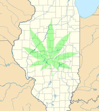 Illinois-senate-passes-05-17