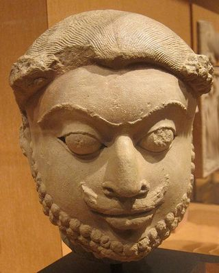482px-Head_of_a_bearded_man,_India,_Madhya_Pradesh_or_Rajasthan,_c._9th-10th_century_CE,_sandstone,_HAA