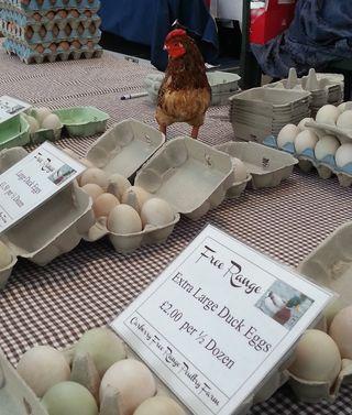 St, Geirge's Market Free Range Eggs