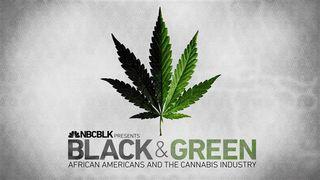 Black_and_green_slate2_2d6258b7ff6757fd04ca12d1dd45030a.nbcnews-ux-840-480