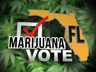 Florida-marijuana-vote-hbtv-hemp-beach-tv
