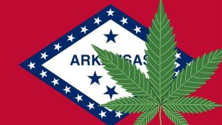 41352980-arkansas-marijuana-leaf