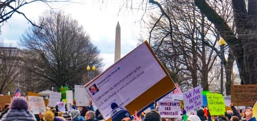 2017.01.29_No_Muslim_Ban_Protest,_Washington,_DC_USA_00270_(32442762652)