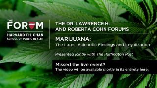 Marijuana-web-missed-1-636x358