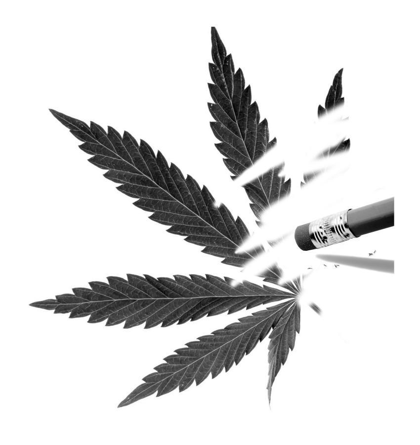 San Diego Weed orgie