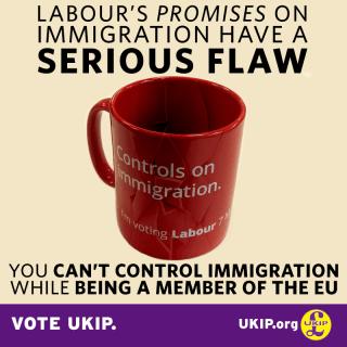 UKIP-graphicmug-FB