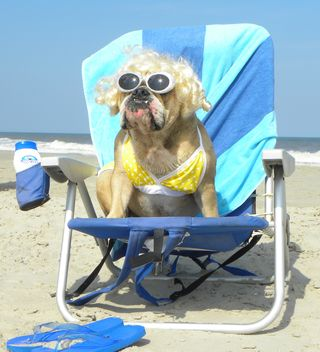 Thelma Lou at the Beach