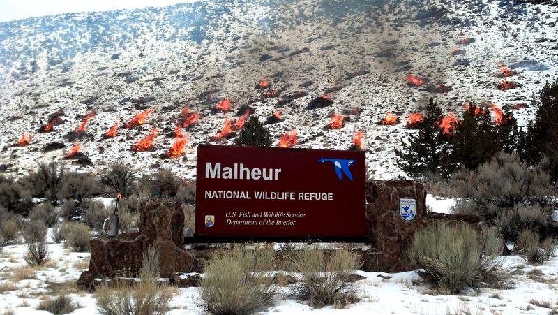 Malheur burning