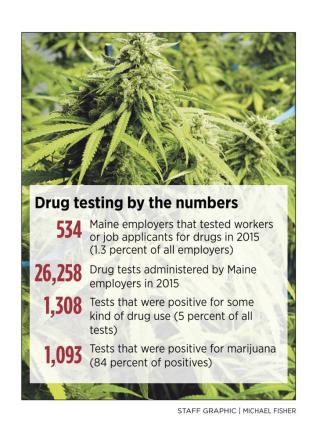 1102351_172516-MarijuanaByNumbers10