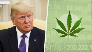 170301105323-trump-marijuana-780x439