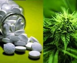Marijuana-vs-pills