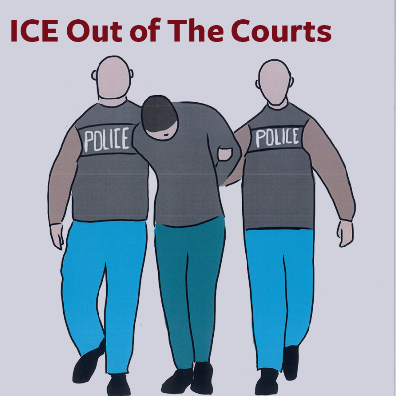ICE-courts