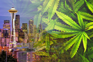 Seattle-marijuana-jobs