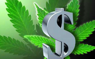 Marijuana-money-live-trading-news