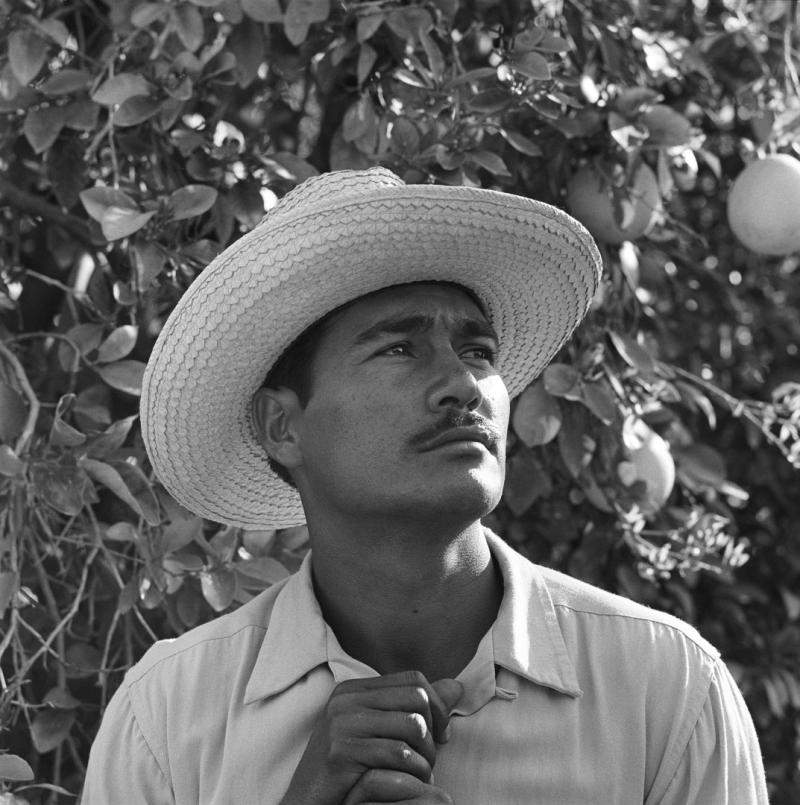 Bracero-program-mexican-border-a-0028