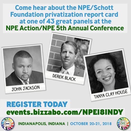 NPE_Schott Panel