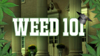 Weed college
