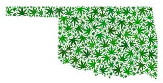 Oklahoma-cannabis-glut-1