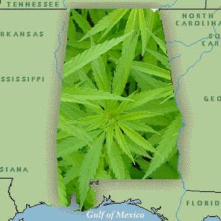 Alabama-cannabis-and-hemp-reform-act-of-2013