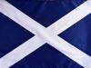 Scotflag