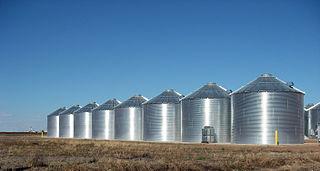 Ralls_Texas_Grain_Silos_2010