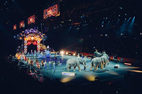 BLPB(CircusPhoto)