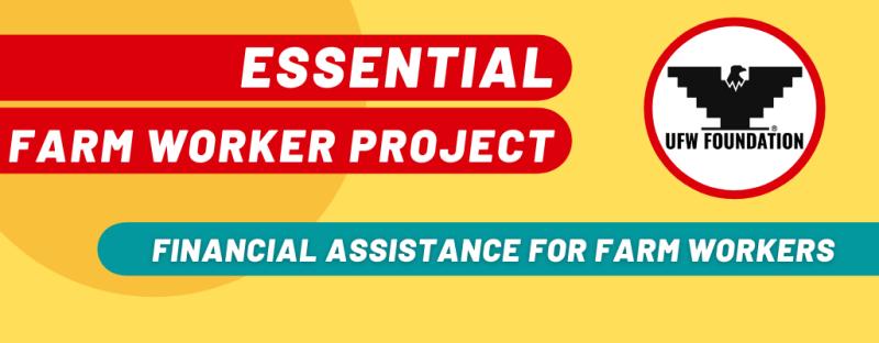 Copy_of_Proyecto_Esencial_Website_Slider_(3)