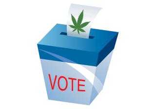 20200803-160721-ballot with pot leaf