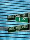 United_nations