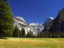 Yosemitemeadow